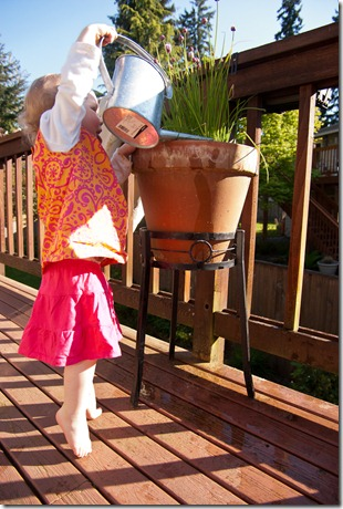 110519 molly watering-006