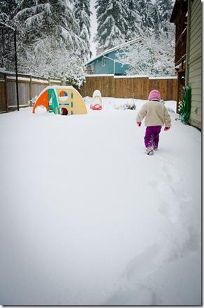 120119 molly snow 004