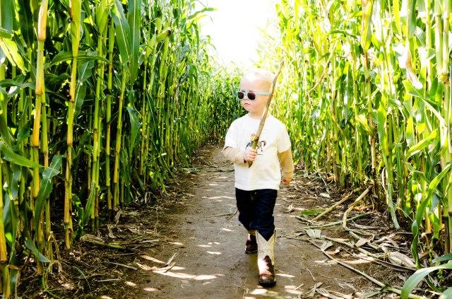 141005 bob's corn maze 006