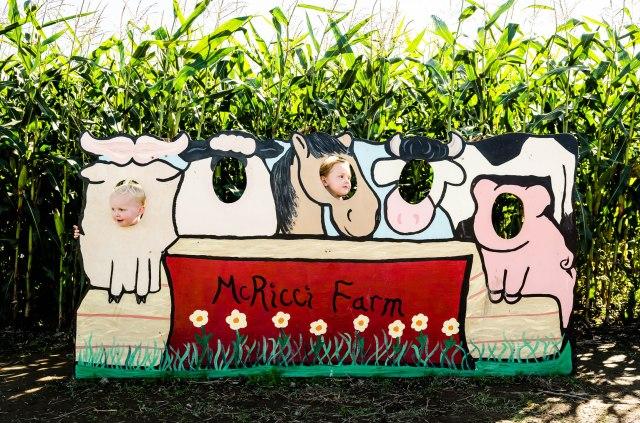 141005 bob's corn maze 025